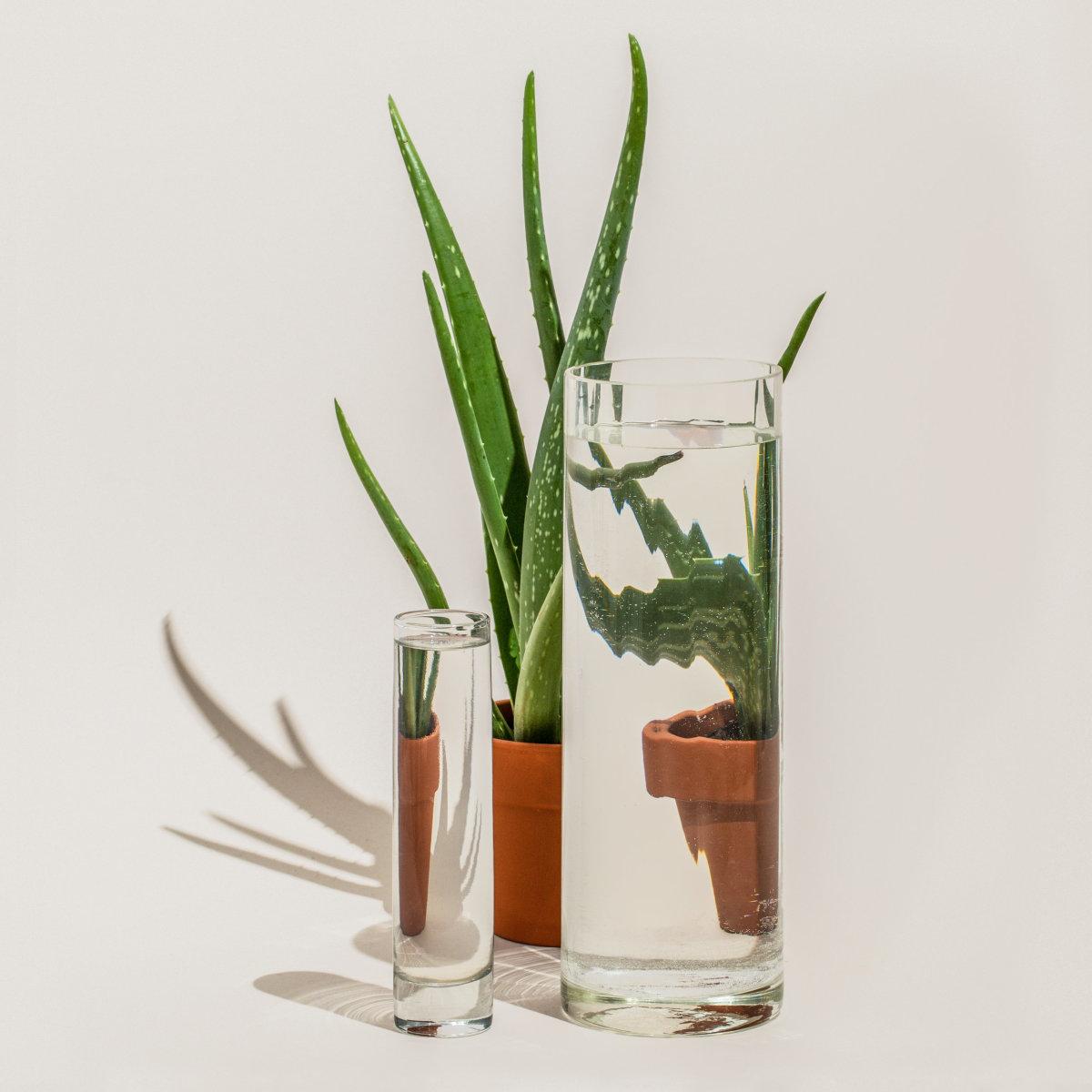 Des Perspectives claires comme de l'eau créative 7