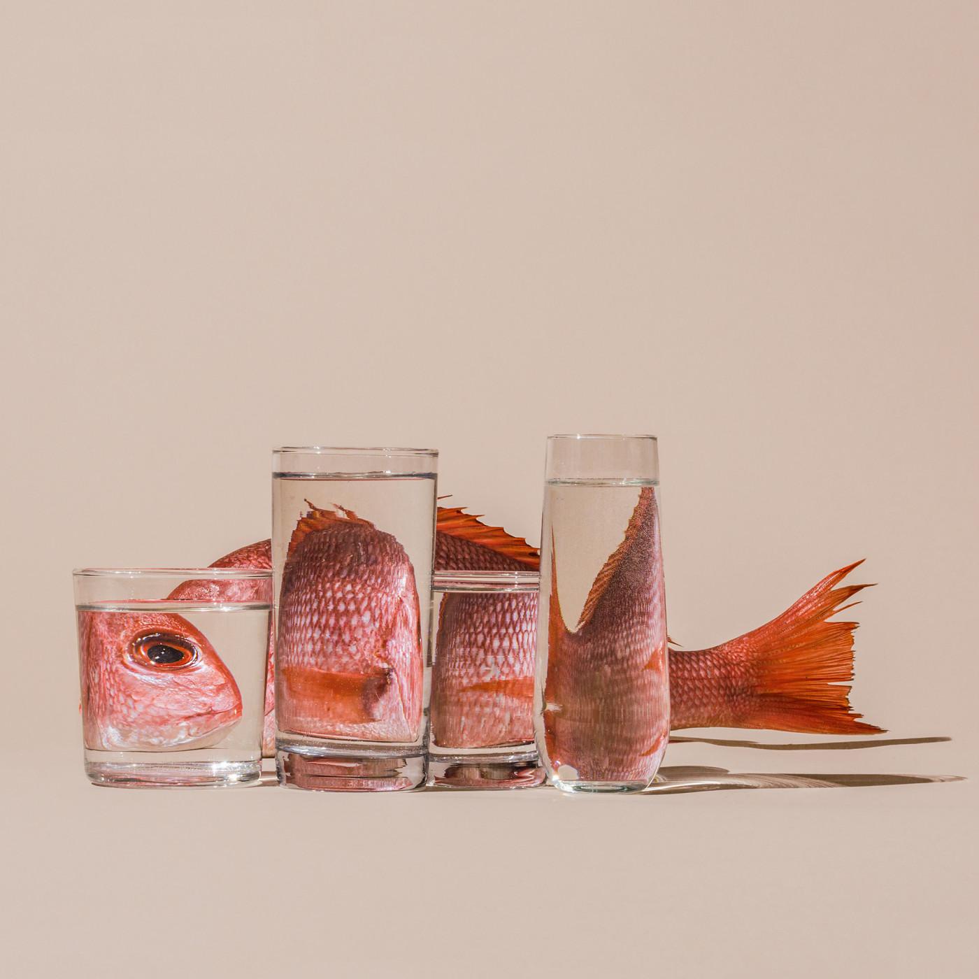 Des Perspectives claires comme de l'eau créative 4