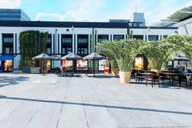 Végétaliser et embellir l'espace urbain, un projet belles corolles végétales 2