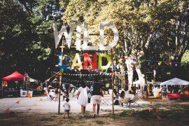 Wild Summer le Festival le plus wild du week end 8