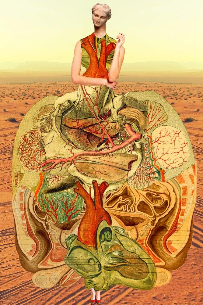 Une série de statuts et d'êtres imaginaires créés par Johanna Goodman 27 - MontpelYeah Magazine