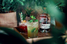 Aperture et ses cocktails à Montpellier 15