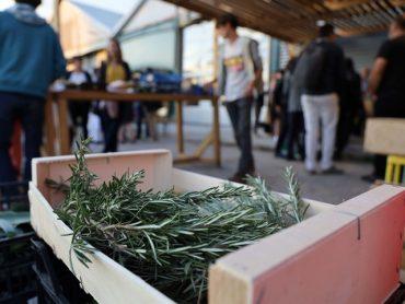 Un nouveau marché Paysan bio et raisonné comme on l'aime ! 11