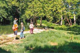 Montpellier une ville écologique et solidaire 2