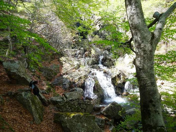 20 coins de nature autour de montpellier : pique nique et rivière 34 - MontpelYeah Magazine